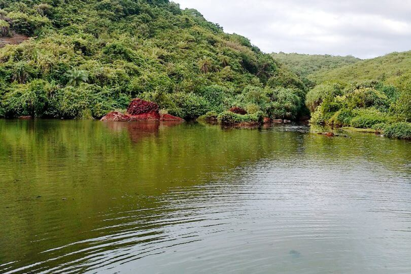 Arambol Sweet Water Lake in North Goa.