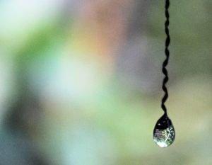 Drop_Kesarval-Spring-Goa